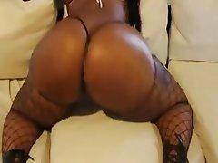 Big Boobs, Big Butts, Stockings, Tattoo